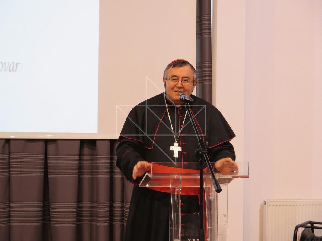 Kardinal Vinko Puljić u Školi mira - 15