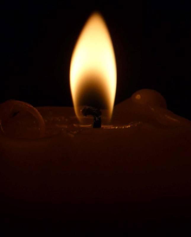 Dan sjećanja na žrtvu Vukovara - Istaknuta